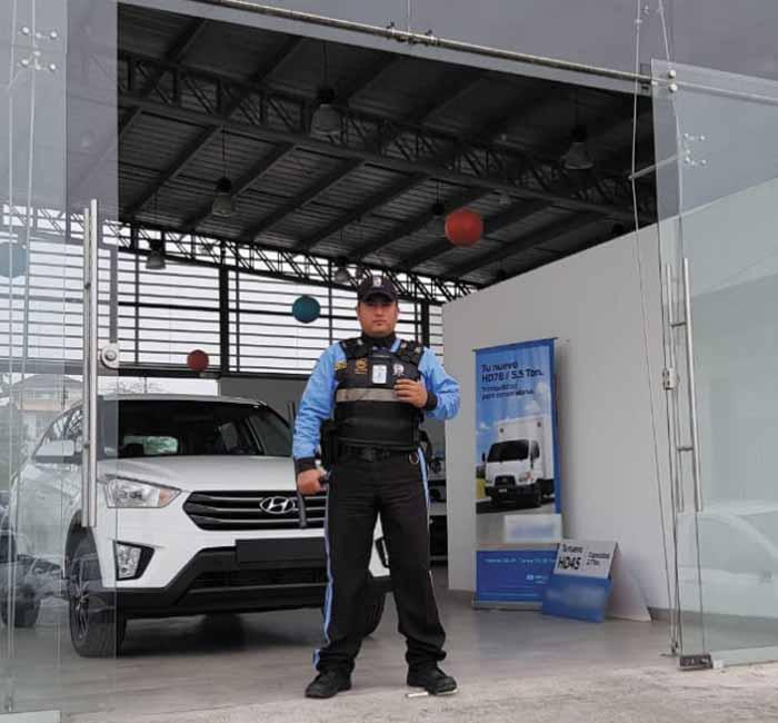 seguridad_servicios_rojas_paredes_security11